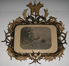 ANT. BLACK FOREST HUGE IMPRESSIVE FRAME MOUNTED W. ANTLER & ROSES