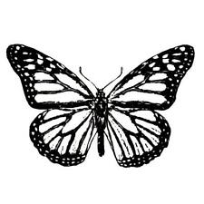 Monarch Butterfly unmounted rubber stamp #9
