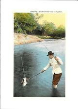 Landing A Big Mouthed Bass In Florida Fishing  - Blank  - Greeting Card