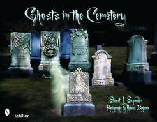 Ghosts in the Cemetery: A Pictorial Study by Stuart Schneider (Paperback, 2008)