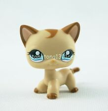 Littlest Pet Shop LPS #1024 Caramel Swirl Shorthair Cat Kitty Girl Gift Toys