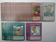 Ancient Fairy Dragon Deck * Ready To Play * Yu-gi-oh