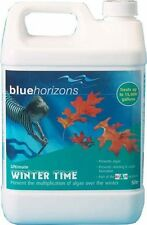 Swimming Pool Winter-Time Chemical Blue Horizons