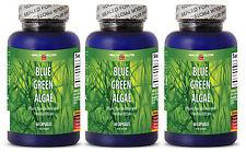 Chorella Infused - BLUE GREEN ALGAE 500MG - Antioxidants Boost - Body Detox - 3B