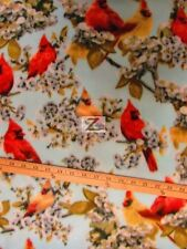 """SPRING CARDINAL BY BAUM TEXTILE MILLS POLAR FLEECE FABRIC 60"""" WIDE SOLD BTY FH31"""