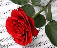 MUSIC NOTES SHEET MUSIC RED ROSE  HOME DECOR COMPUTER MOUSE PAD 9 X 7