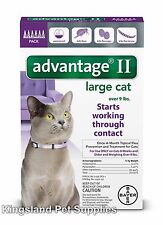 Advantage II for Large Cats (Over 9 lbs, 6 Month Supply) USA EPA APPROVED