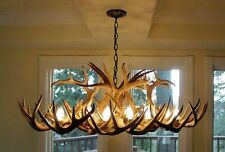 REAL ANTLER WHITETAIL DEER OVAL CHANDELIER 8 LIGHTS, Rustic Lighting, CDN