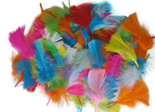 250 Approx Pack Of Many  Beautiful Fluffy Craft Feathers Assorted Colours hat