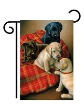 """Bed Time Labs Garden Size (13"""" x 18"""" Approx Flag TG 60072"""