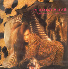 DEAD OR ALIVE - Sophisticated Boom Boom - Epic