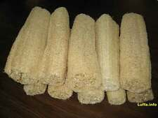 Lot 10 pieces of Natural body scrubber *LOUFAH / loofah SPONGE*