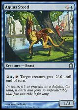Aquus Steed *FOIL* RtR Return to Ravnica MTG Magic Cards Blue Uncommon