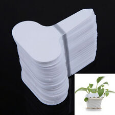 100pcs Plastic Plant T-type Tags Markers Nursery Garden White Labels