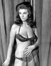 8x10 Print Eve Eden Contest Girl 1964 #EE3