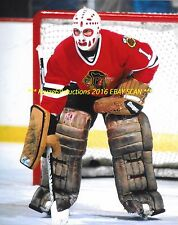 WARREN SKORODENSKI In NET w/EGGHEAD Mask 8x10 Photo CHICAGO BLACKHAWKS Goalie