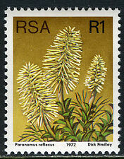 South Africa 490a, Perf.14, MNH. Plant: Paranomus reflexus, 1977