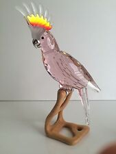 Swarovski Crystal Cockatoo Bird Pink Paradise Garden 718565 Brand New in Box