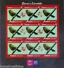 Ca Gr of St. Vincent MNH S-A SS, Taipei 2015 Steere's Liocichla Birds - T5