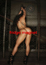Sexy Hot  Model Tattoo Girl Bikini Fridge Tool Box Magnet Refrigerator M22