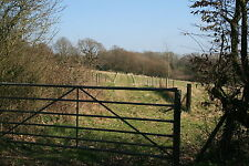 Land for sale in England ~ Salehurst - East Sussex 8A9