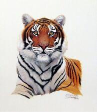 Siberian Hunter Tiger Print By Derk  Hansen  Signed