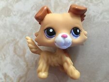 Littlest Pet Shop RARE Collie Dog Puppy #2452 Yellow Tan Brown White Blue