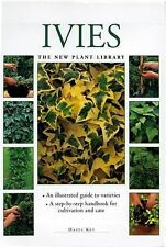 Little Plant Library:  Ivies