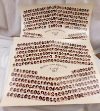 "1984 Whitmer Senior High School Toledo, Ohio 11"" x 14"" Class Photo Set of 2"