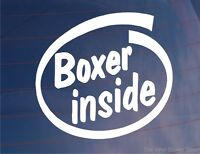 BOXER INSIDE Novelty Car/Van/Window/Bumper Sticker - Ideal for Boxer Dog Owners