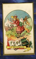 Chromo Botanique Botany herbier Herbarium Pharmacie Renazé Old Trade Card Duffit