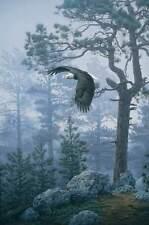 """Daniel Smith """" Shrouded Forest """" S/N  948/950 Mint 1993  w/Cert+Folder $2000 Val"""
