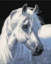 "New DIY Acrylic Paint By Number 16X20"" kit Oil Painting On Canvas White Horse"