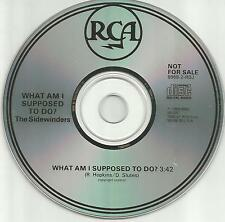 Sand Rubies SIDEWINDERS What am I supposed to do PROMO DJ CD Single 1989 MINT