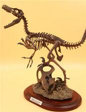 Fossil Master Dinosaur Protoceratops vs Velociraptor Skeleton Figurine Model