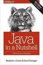 Java in a Nutshell by Benjamin J. Evans and David Flanagan (2014, Paperback)