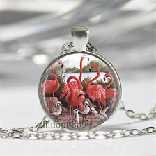 Vintage Flamingos Cabochon Silver plated Glass Chain 25mm Pendant Necklace