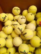 150 Tennis Balls Pro Penn Heavy Duty Used  Only 3 Weeks Old Indoor Use