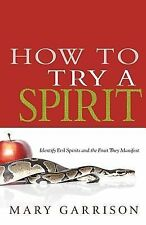 How to Try a Spirit by Mary Garrison (2013, Paperback)