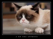 A1 FUNNY DEMOTIVATIONAL GRUMPY CAT LARGE WALL ART PICTURE PRINT PREMIUM POSTER