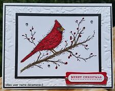 CHRISTMAS HANDMADE CARD KIT, STAMPIN' UP BEAUTY OF THE SEASON, CARDINAL