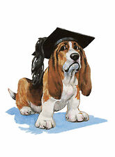 BASSET HOUND WEARING COLLEGE HAT CHARMING DOG GREETINGS NOTE CARD