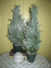 """2 Flocked 24"""" Cedar Topiary Mini Artificial Christmas Trees in Weighted Pots"""
