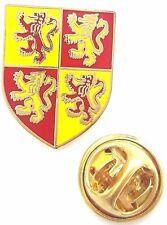 Wales Welsh Devolution Shield Enamel Lapel Pin Badge T1023