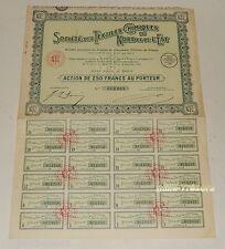 Action 1933 de la Société des TEXTILES CHIMIQUES du Nord et de l'Est 250 francs