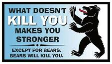 Fridge Magnet: What Doesn't KILL YOU Makes You Stronger (...Except Bears)
