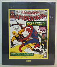 Marvel The Amazing Spider-Man #16 cover poster Signed by STAN LEE. matted, JSA