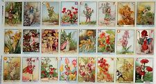 ALPHABET FLOWER FAIRIES Panel ABC Fairy Blocks Cicely Mary Barker Fabric 23 inch