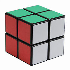 shengshou Magic 2 X 2 Ultra-smooth Professional Speed Cube Puzzle Twist