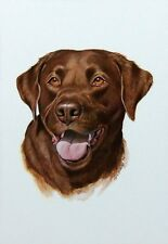 BRAND NEW BEAUTIFUL CHOCOLATE LABRADOR RETRIEVER PRINT  BY ARTIST ROGER CRUWYS